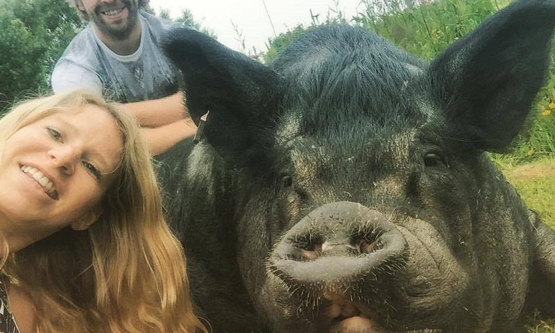 Best selfie ever! Pet pig George posed happily with Hayley.